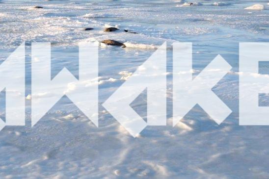 Winter Sea 32