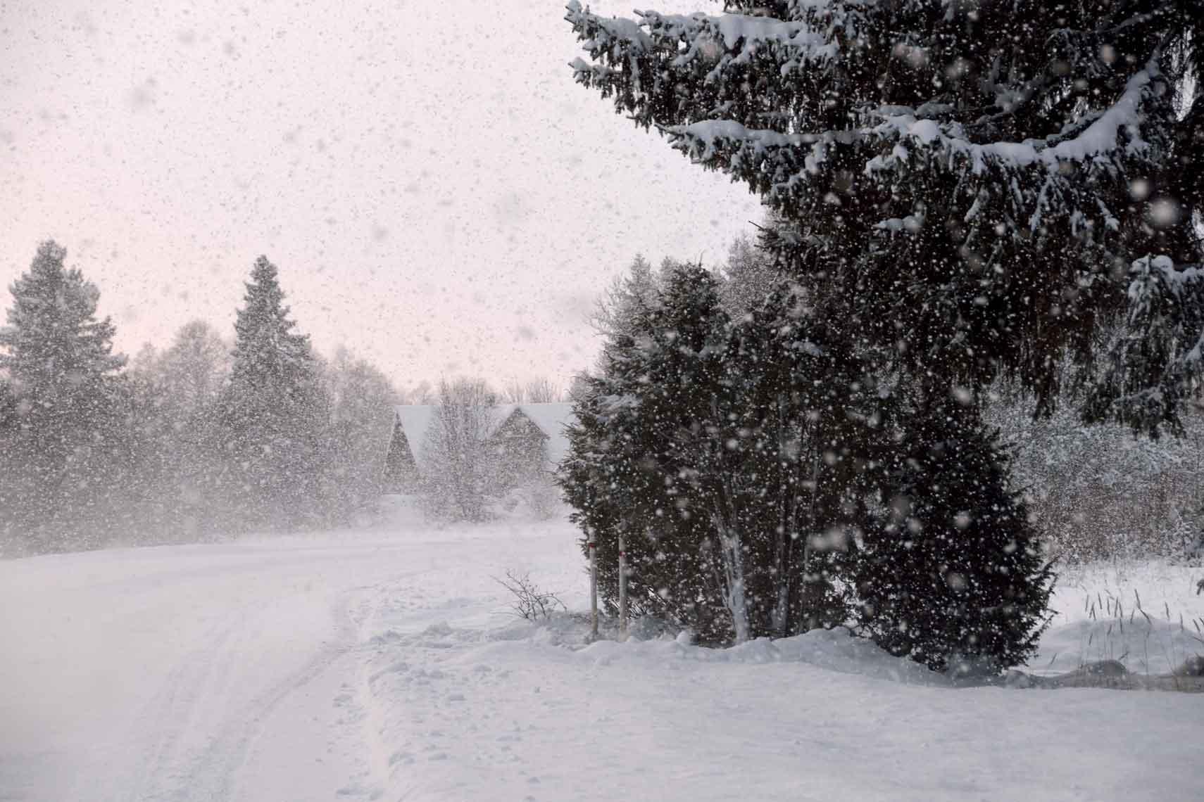 beautiful winter image
