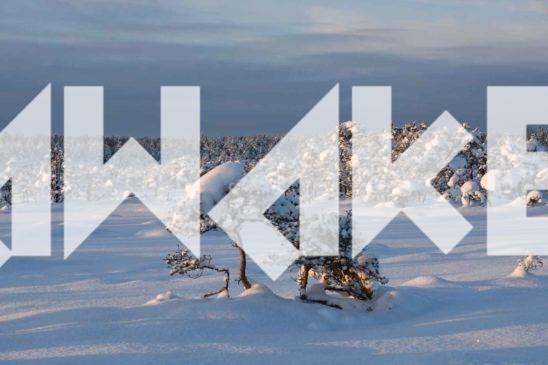 Winter Scenery 19