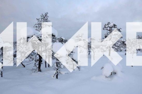 Winter Scenery 22