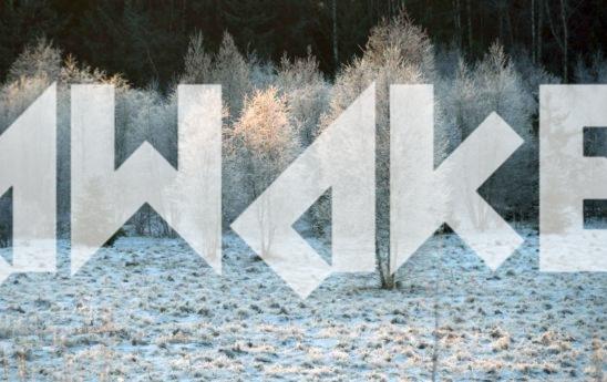Winter Scenery 30