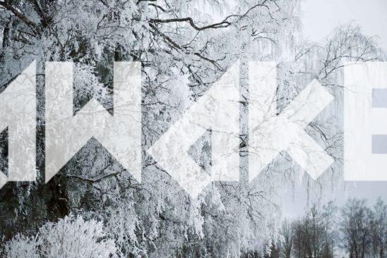 Winter Scenery 32