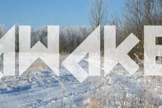 Winter Scenery 38