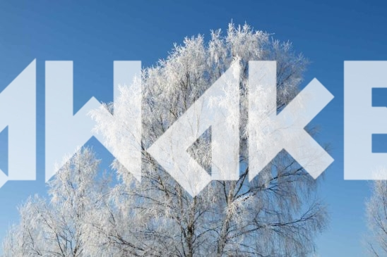 Winter Scenery 39