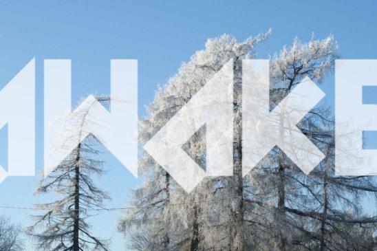 Winter Scenery 41