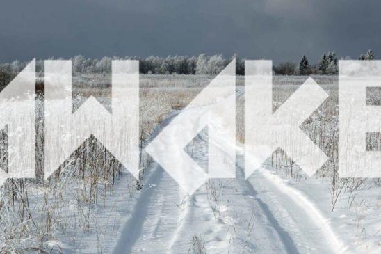 Winter Scenery 43