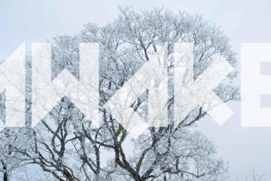 Winter Scenery 45